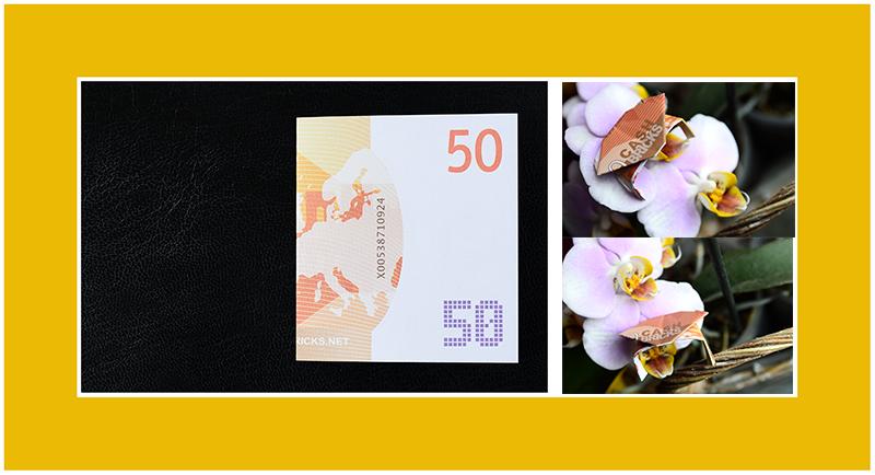 Geldscheine falten Anleitung Krebs 50 Euro