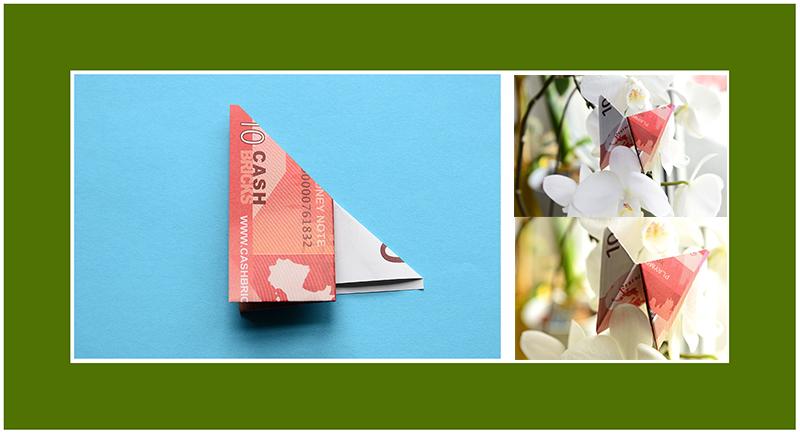 Geldscheine falten Hochzeit Schmetterling