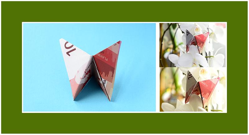 Geldscheine falten Schmetterling