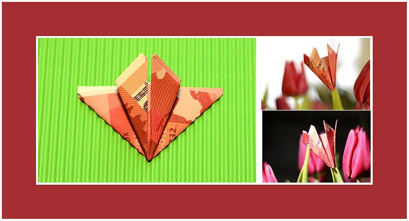 Geldscheine falten Tulpe 01