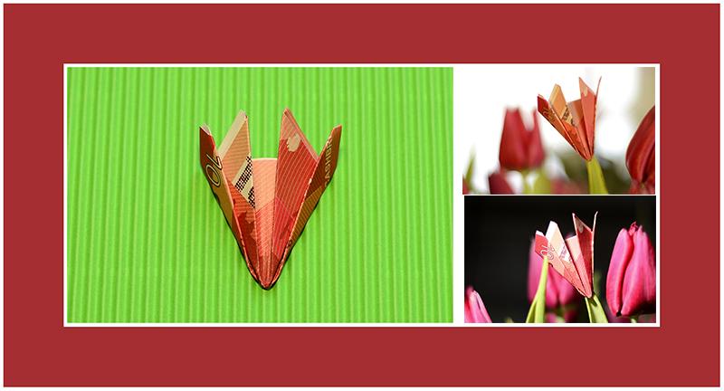 Geldscheine falten Tulpe 02