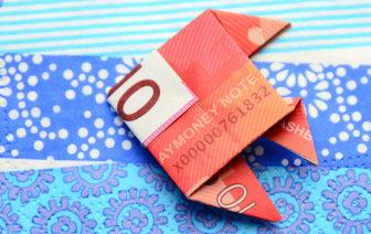 Fisch aus 10 Euro Geldschein falten